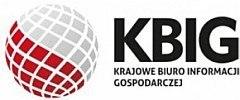 Krajowe Biuro Informacji Gospodarczej